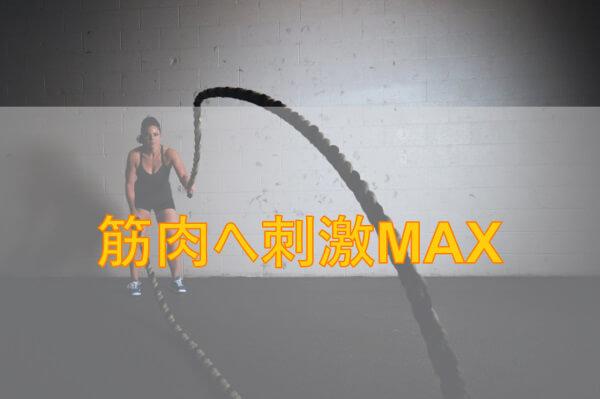 拮抗筋トレーニングでスランプを脱出【太い腕を目指す】