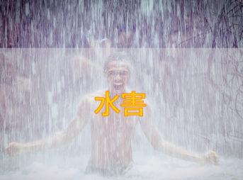 浄水シャワーヘッドをレンタルで気軽に試す | 肌荒れの原因は水かも